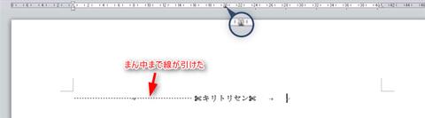 word-cut-line12